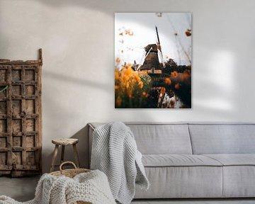 Noordermolen, Groningen van Marion Stoffels