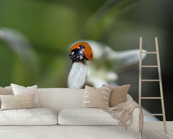 Sfeerimpressie behang: lieveheersbeestje op edelweiss van Marieke Funke