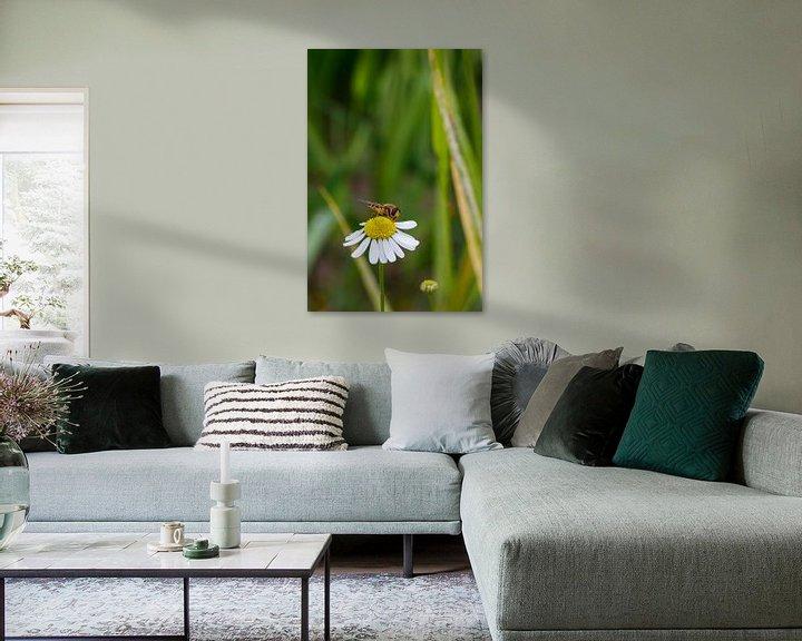 Beispiel: Biene und Gänseblümchen. von Anjo ten Kate
