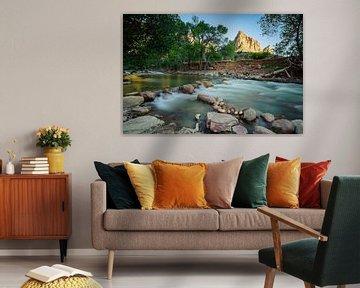 Zion Canyon van Denis Feiner