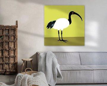 Ibis von Studio Mattie