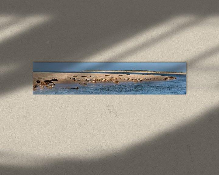 Impression: Phoques se reposant sur un banc de sable près d'Ameland sur Frans Lemmens