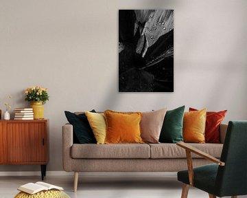 Zwart wit foto van een blad met dauwdruppels van Ellis Peeters