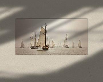 Panorama der Boote der Braunen Flotte im Nebel