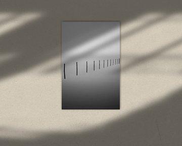Acht polen van Marvin Schweer