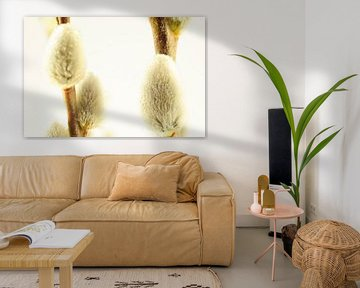 Katjes met Waterdruppels von Erwin Plug