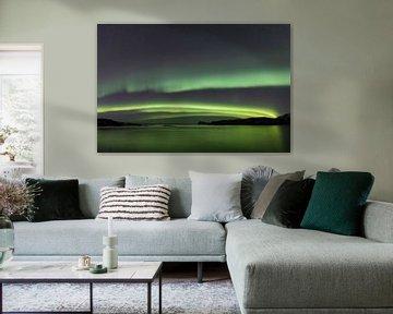 Noorderlicht over Håja von Nathalie Daalder