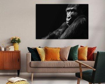 Gorilla von Tanya Gorree