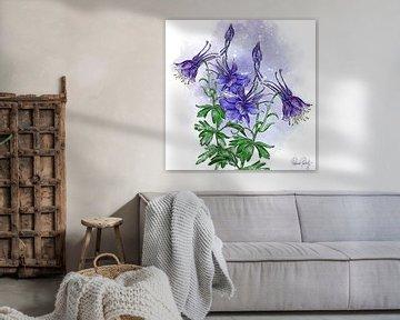 Blumenmotiv - Waldblume Wald-Akelei von Patricia Piotrak