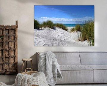 Aan het westelijk strand van Fischland van Joachim G. Pinkawa