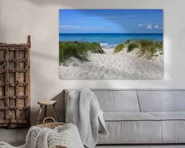 Toegang tot het strand van de Oostzee van Joachim G. Pinkawa