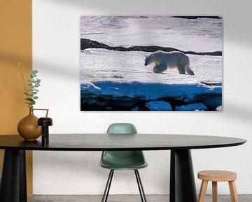 De IJsbeer struinend door de sneeuw en het ijs van Spitsbergen van Merijn Loch