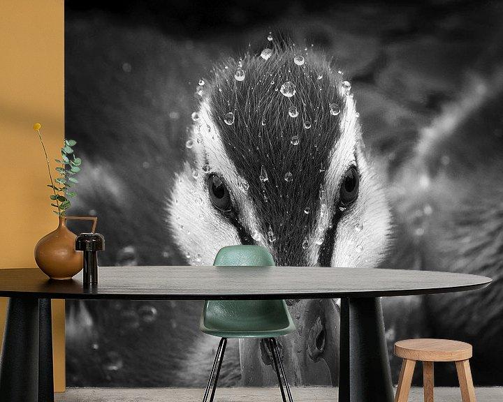 Impression: Jeune canard avec des gouttelettes d'eau sur Frans Lemmens