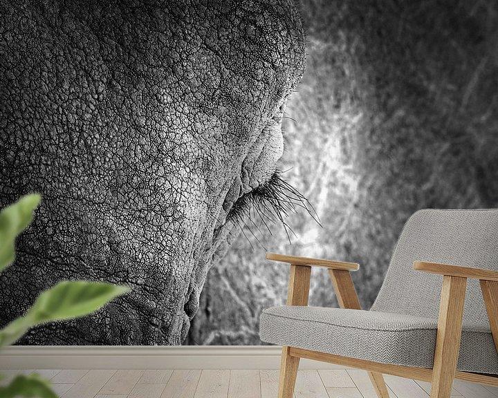 Impression: Gros plan sur l'œil de l'éléphant sur Frans Lemmens
