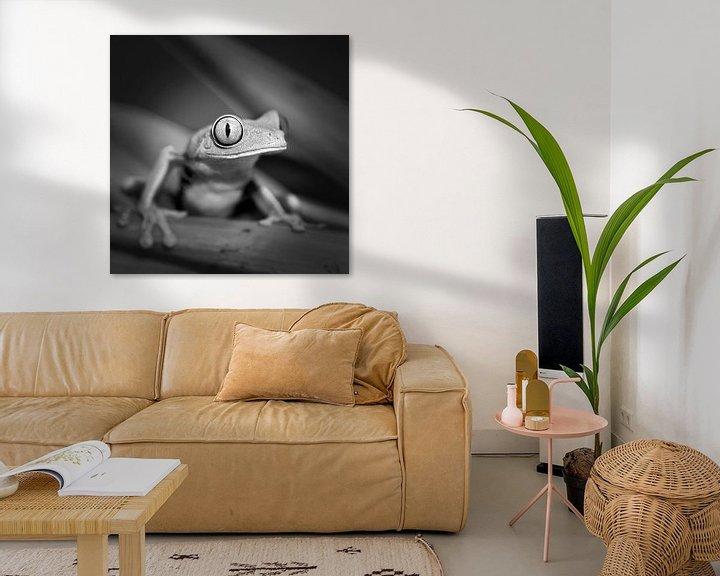 Impression: Grenouille aux yeux rouges sur Frans Lemmens