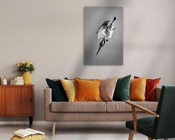 Elsterfischer von Frans Lemmens