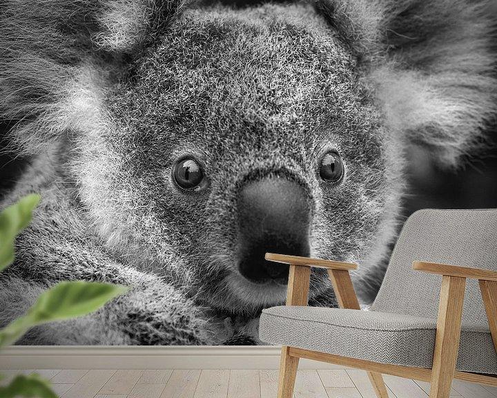 Impression: Bébé Koala sur Frans Lemmens