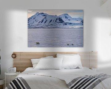 Landschap Spitsbergen met IJsberen van Merijn Loch