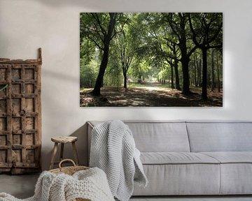 Bomenlaan van Esther Leijten-Kupers
