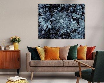 Sommerblumenarrangement in Schwarz-Weiß. von Nico van der Hout
