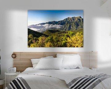 Bergen bij Sao Vicente op Madeira van Werner Dieterich