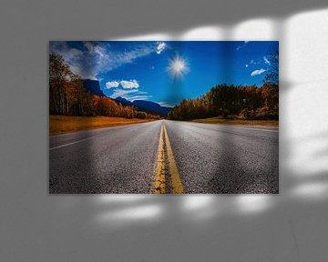 Jasper Road van Bibi Veth