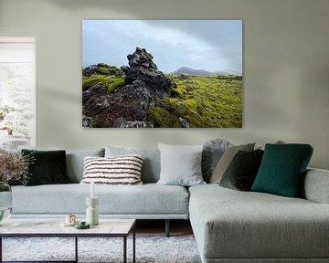 Moslandschap IJsland van René Schotanus