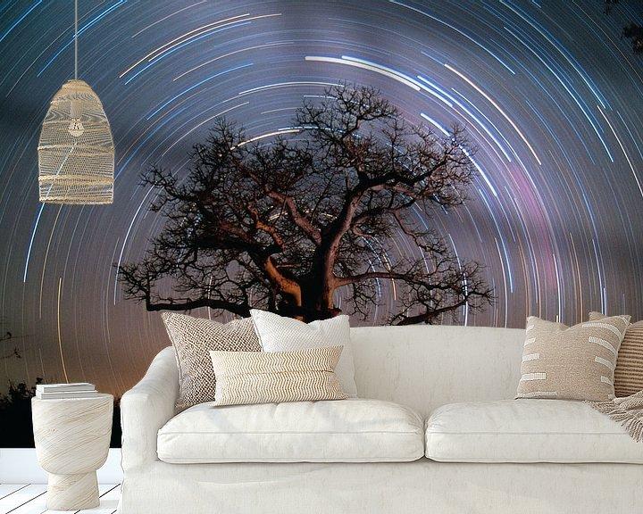 Impression: Baobab entouré d'étoiles sur Frans Lemmens