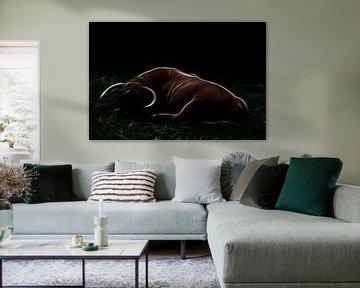 Schlafender Hochlandbulle von Christophe Fruyt