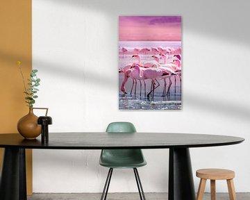 Flamingo's van Jan Schuler