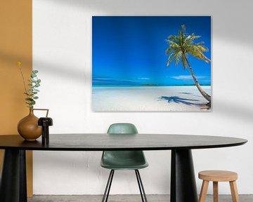 Palmboom op Rangiroa van Nick de Jonge - Skeyes