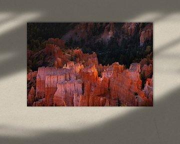De eerste zonnestralen Bryce Canyon van Peter Gude