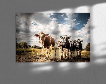 Koeien aan de waterkant van Cynthia Verbruggen