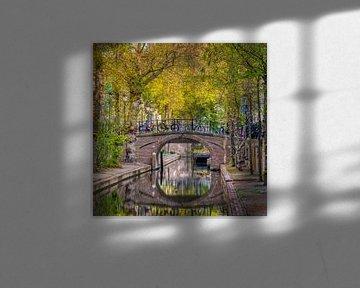 Neuer Wassergraben im Frühjahr. von Robin Pics (verliefd op Utrecht)