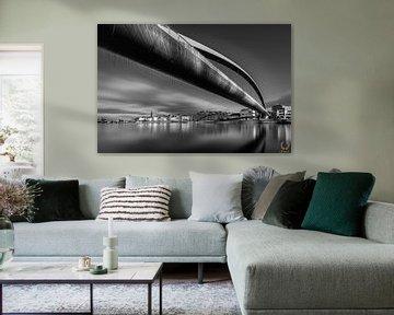 Fahrradbrücke (Hoeg Brögk) Schwarz-Weiß von Danny Bartels
