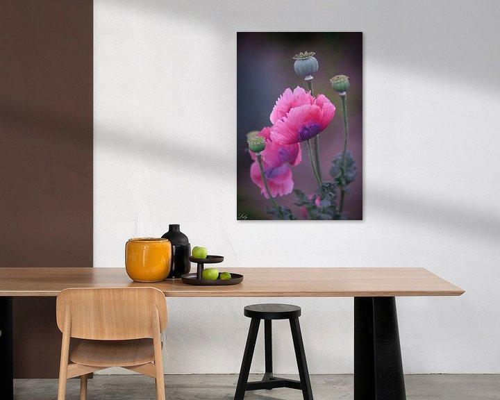 Sfeerimpressie: Roze klaprozen (papaver) van Lily Ploeg