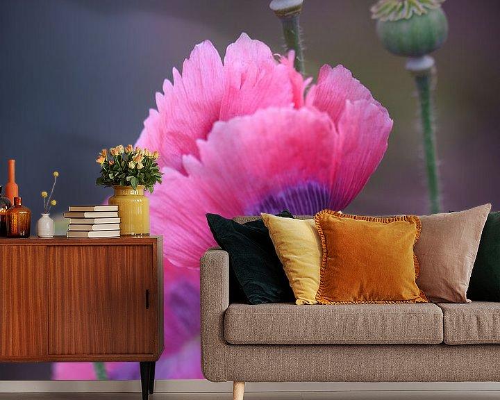 Sfeerimpressie behang: Roze klaprozen (papaver) van Lily Ploeg