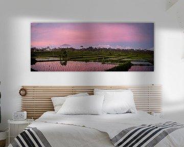 Roze zonsondergang over een rijstveld in Bali van Ellis Peeters