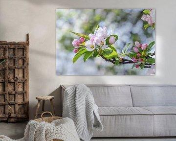 Aufstrebender Blütenzweig mit grünen Blättern von Arja Schrijver Fotografie