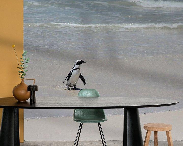 Beispiel fototapete: Pinguin dockt an von Quinta Dijk