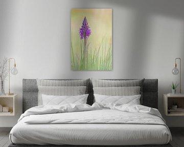 Gefleckte Schilfrohrorchidee von Yvon van der Laan