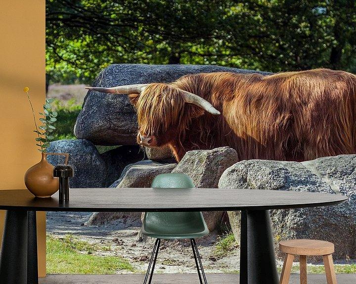 Sfeerimpressie behang: Schotse Hooglander bewaakt hunebed van Andre Brasse Photography