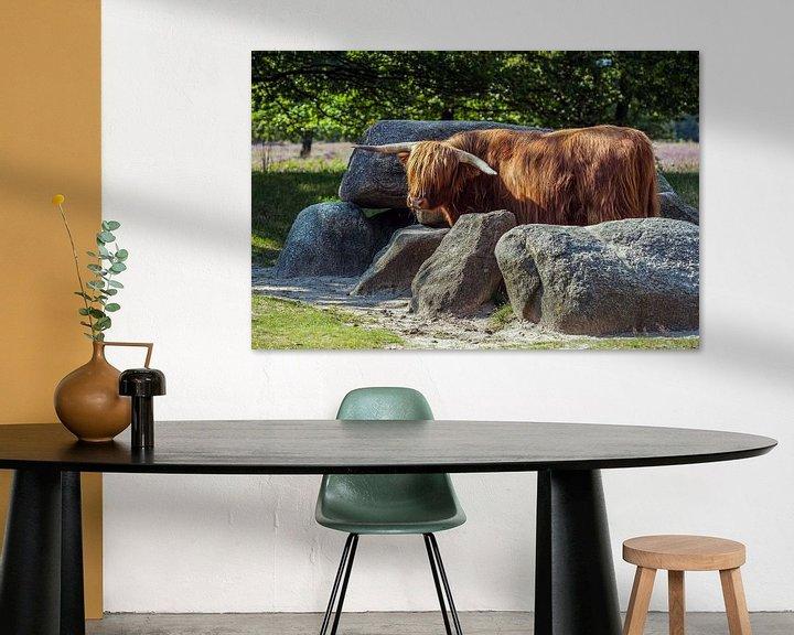Sfeerimpressie: Schotse Hooglander bewaakt hunebed van Andre Brasse Photography