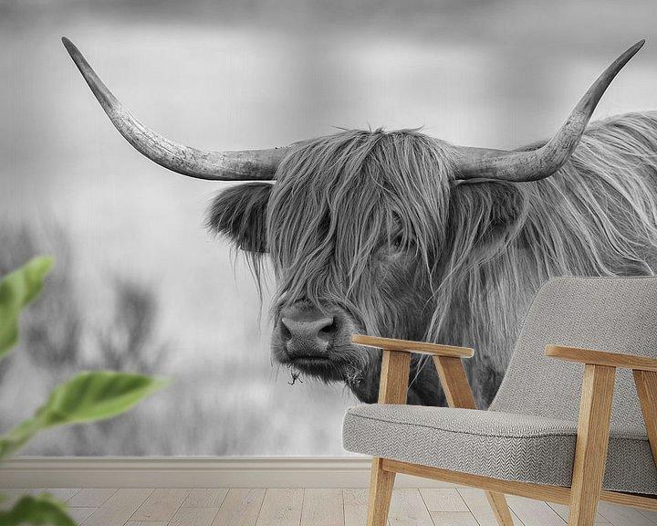 Sfeerimpressie behang: Schotse Hooglander van Menno Schaefer