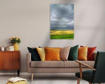 Zomerse onweersbui boven graanvelden in Flevoland van Sjoerd van der Wal