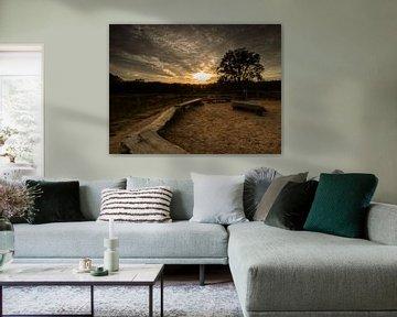 Holtingerveld bij zonsondergang van Jan Willem Oldenbeuving