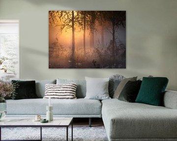 Fins bos van Yvonne Albe
