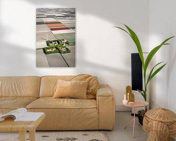 Luftaufnahme von Bauernhöfen und Tulpenfeldern von Frans Lemmens