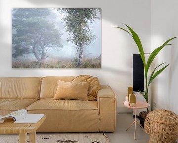 Summer mist van Roelie Steinmann