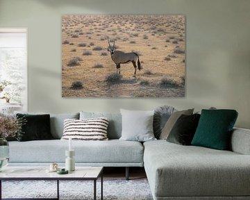 Oryx (Gemsbock) von Merijn Loch